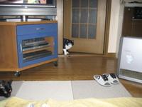 Blog200701271_3